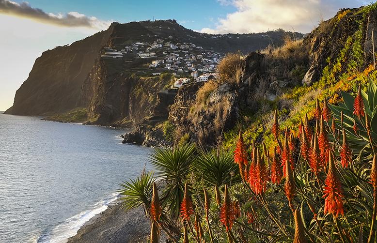 Island of Madeira, looking towards the town of Camara de Lobos-1