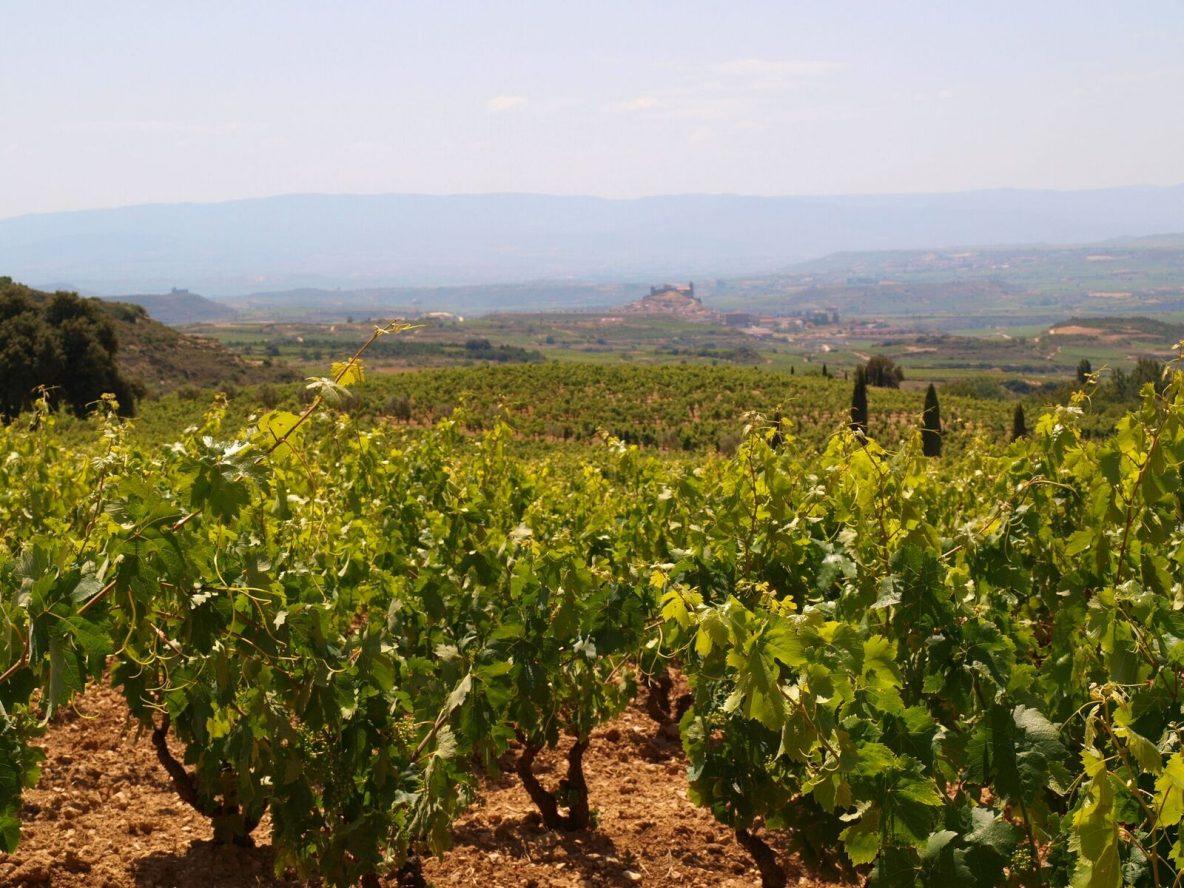La Rioja Spain travel guide