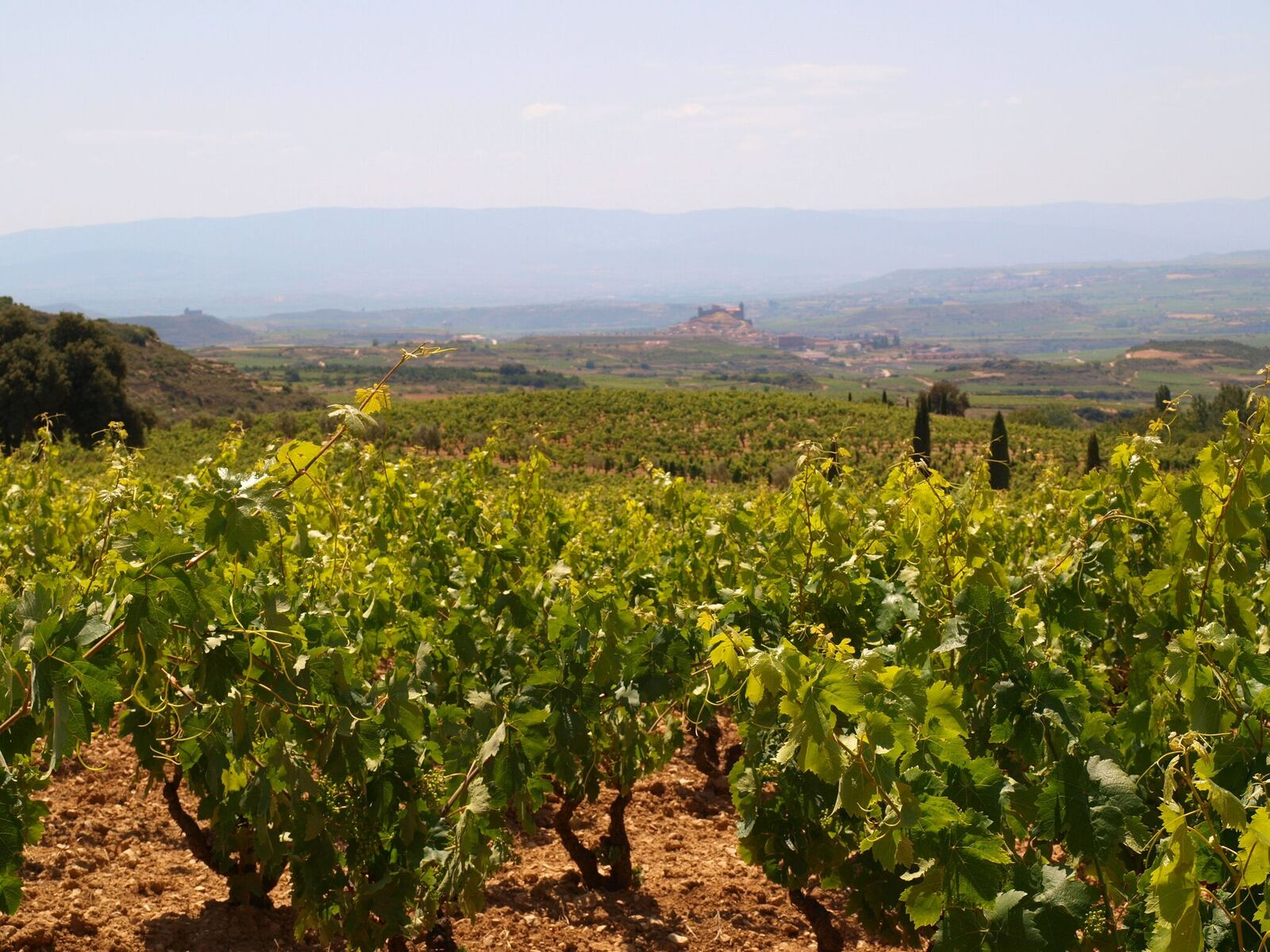 La Rioja Spain travel guide