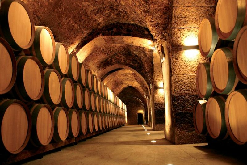 best of rioja wine tour
