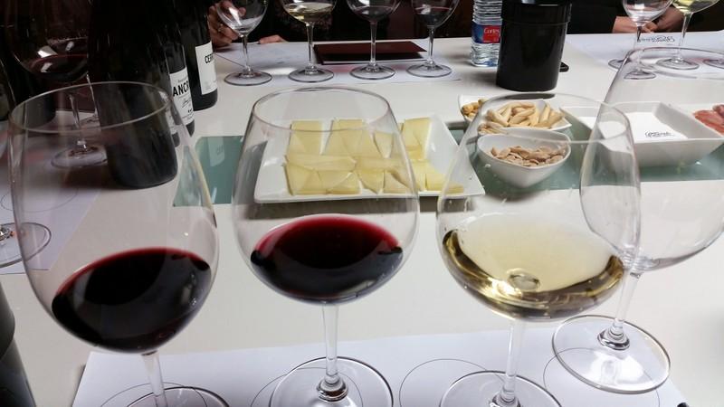 Rioja Spain wine deluxe private tour