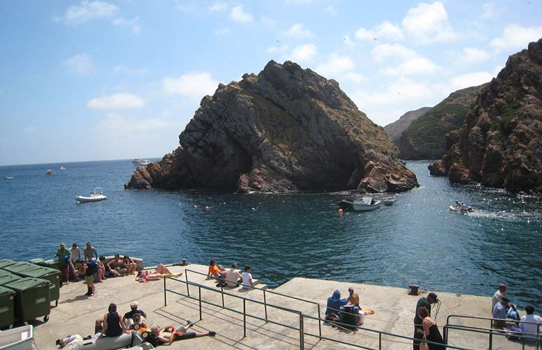 Berlengas Islands Biosphere Silver Coast Portugal
