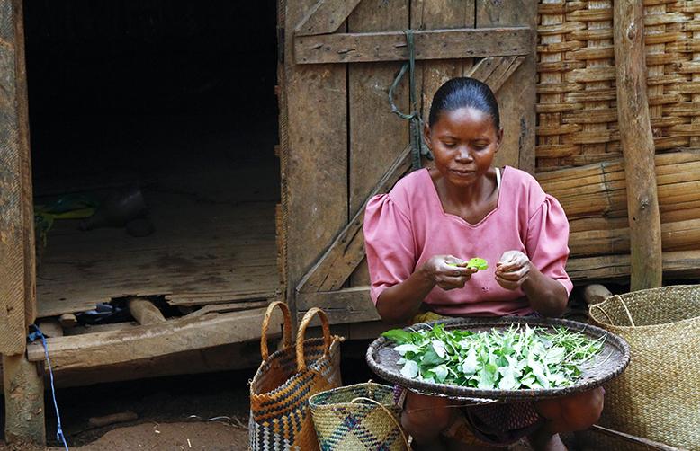 Madagascar ethnic groups