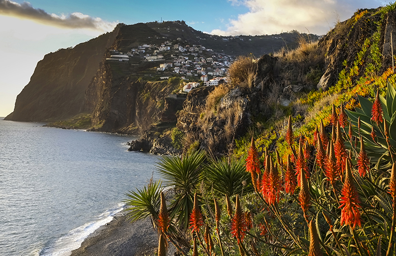 Island of Madeira, looking towards the town of Camara de Lobos-1