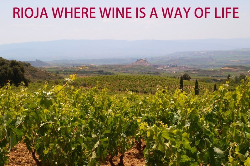 Rioja where wine is a way of life