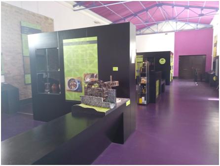 olive oil route Granada Spain-MUSEUM PDO PONIENTE GRANADA 1