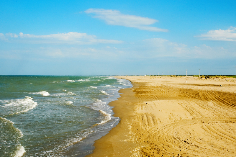 Beach at Delta de l'Ebre Natural Park
