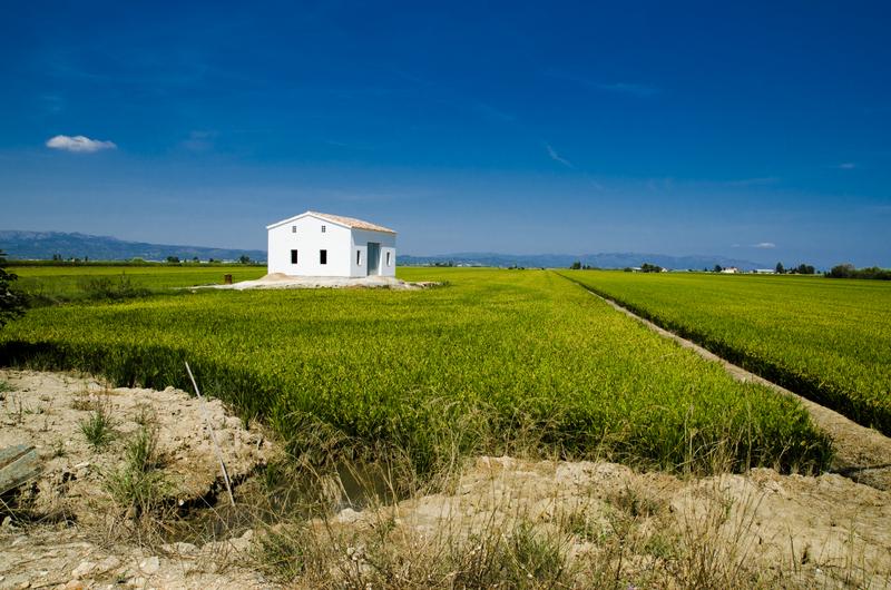 Delta de l'Ebre Spain Landscape