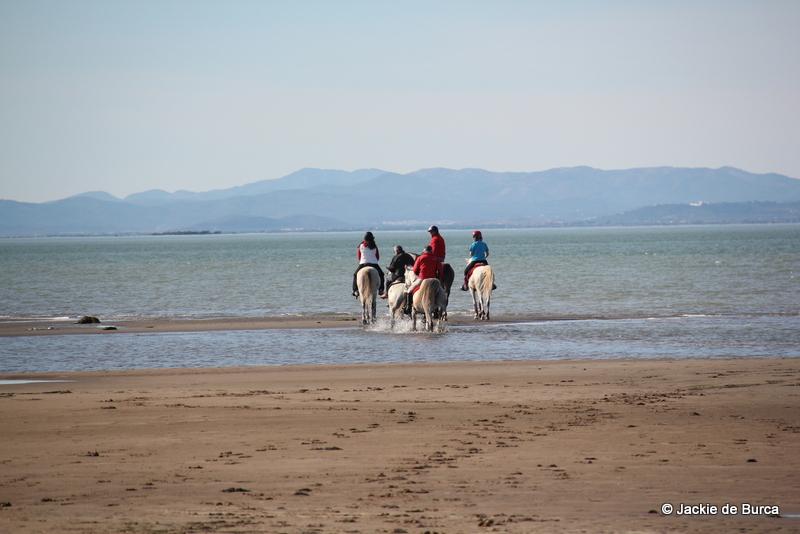Tarragona day trips-Delta de l'Ebre beaches Catalonia