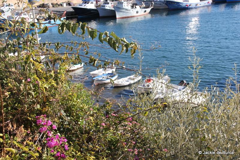 Tarragona day trips-L'Ametlla de Mar harbour Catalonia