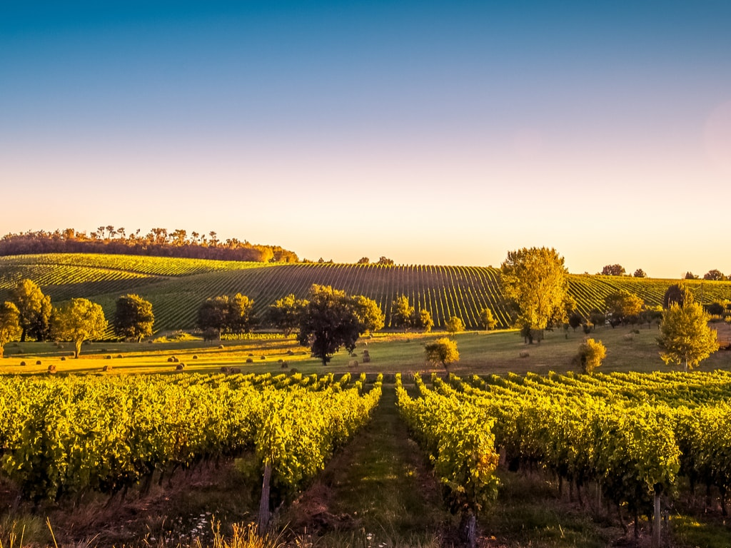 https://travelinspires.org/wp-content/uploads/2019/02/Bordeaux-France-travel-guide-beautiful-vineyards.jpg