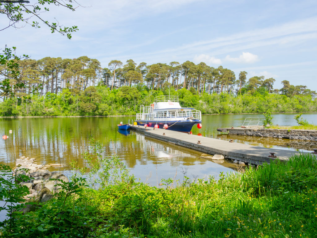 Inchagoill Island on Lake Corrib, By Elzbieta Sekowska