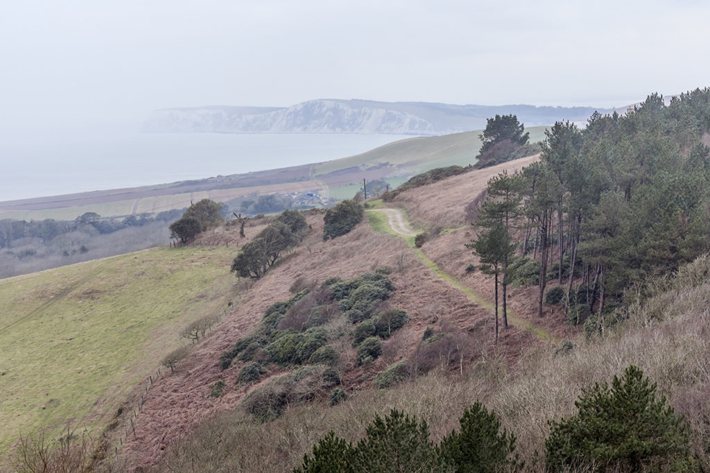 Isle of Wight where to go walking