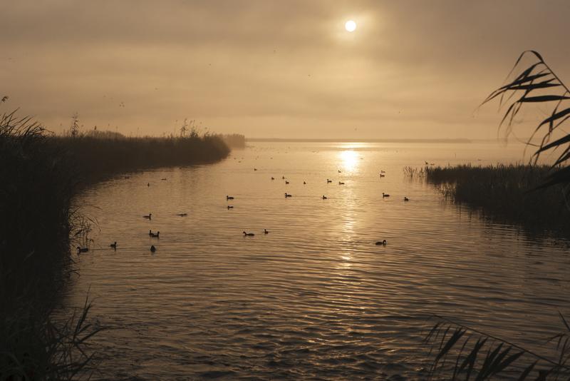 Delta de l'Ebro Sunrise Catalonia