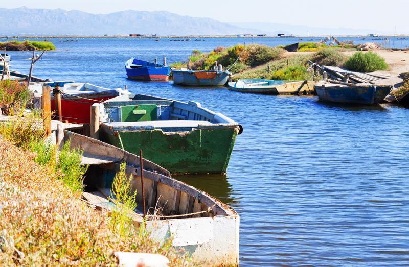 Delta of Ebro river boats