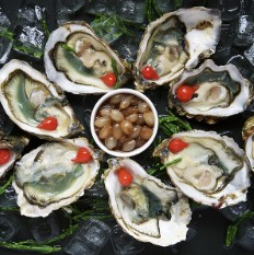Galway international oyster fetival