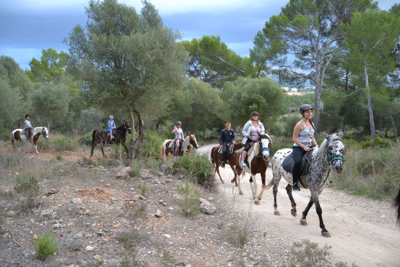horse riding Mallorca hills things to do Balearic islands