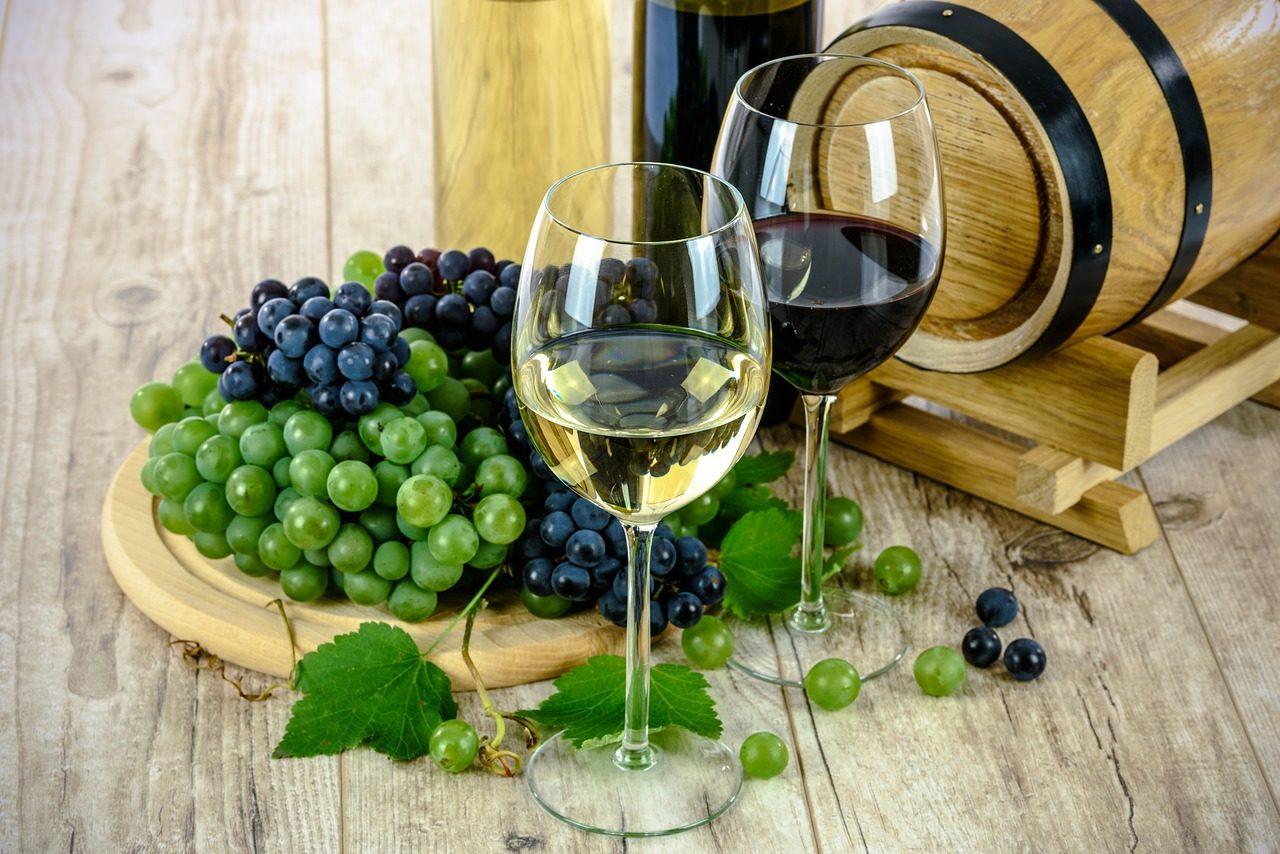 majorca vinyard tours