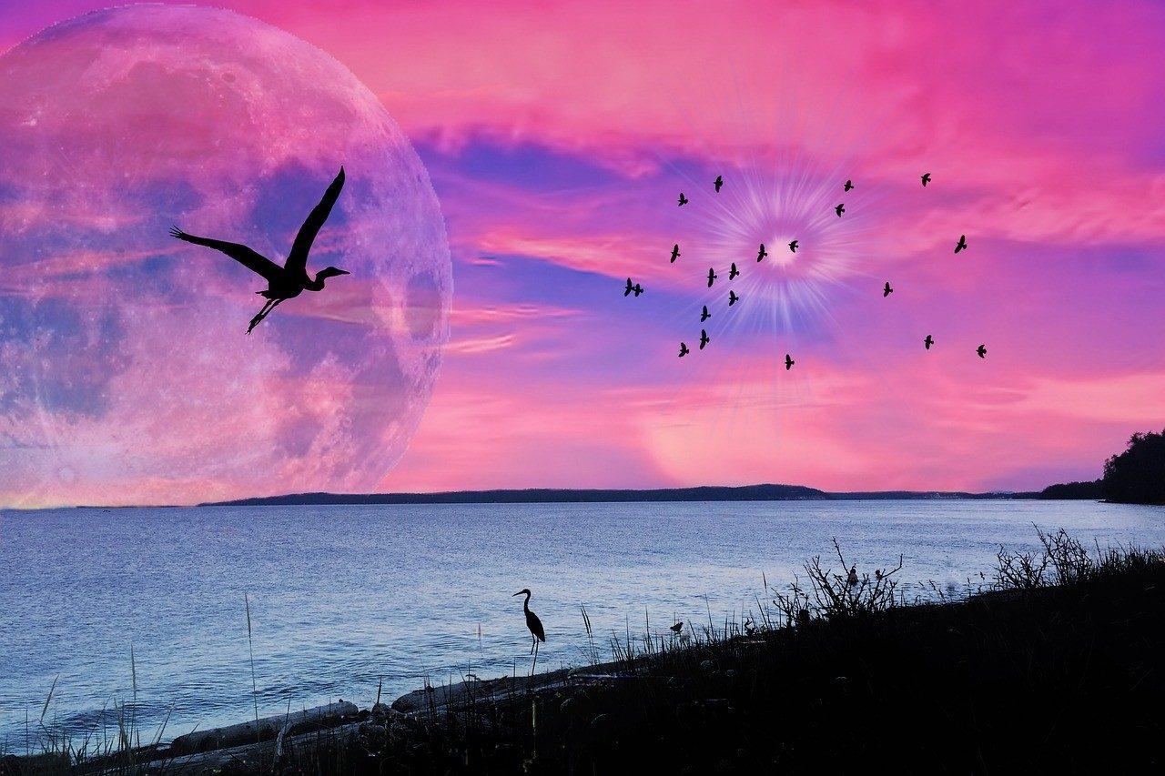 https://travelinspires.org/wp-content/uploads/2020/05/indigenous-tourism-british-columbia-vancouver-island-pink-sky-1280x853-1280x853.jpg