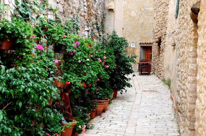 Cervera del Maestre streets stone flowers