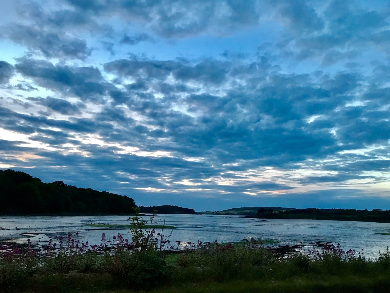 Strangford Lough Ann Smyth-Scenic route from the Studio to home
