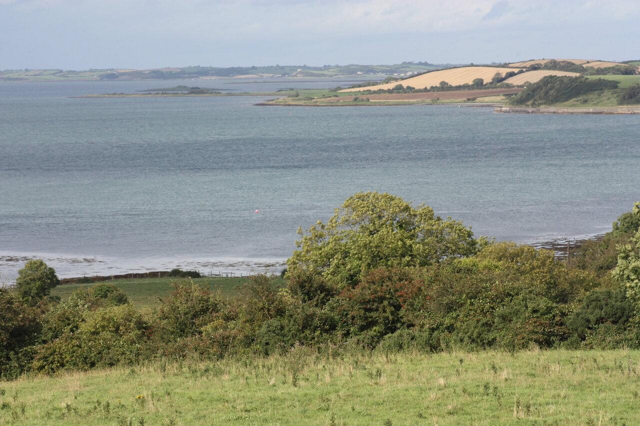 Strangford Lough View
