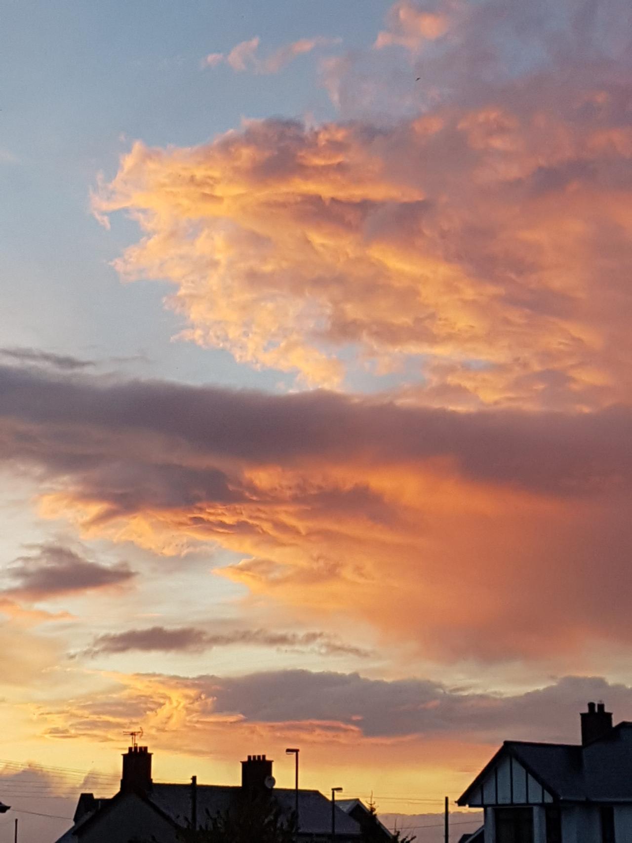 Contrast of light in the sky. - Maeve O'Lynn