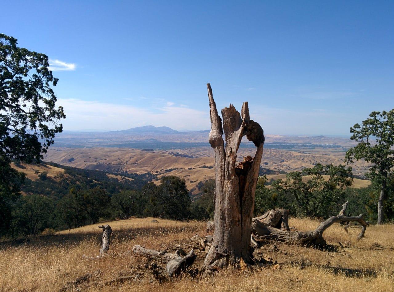 California Hills - Byddi Lee