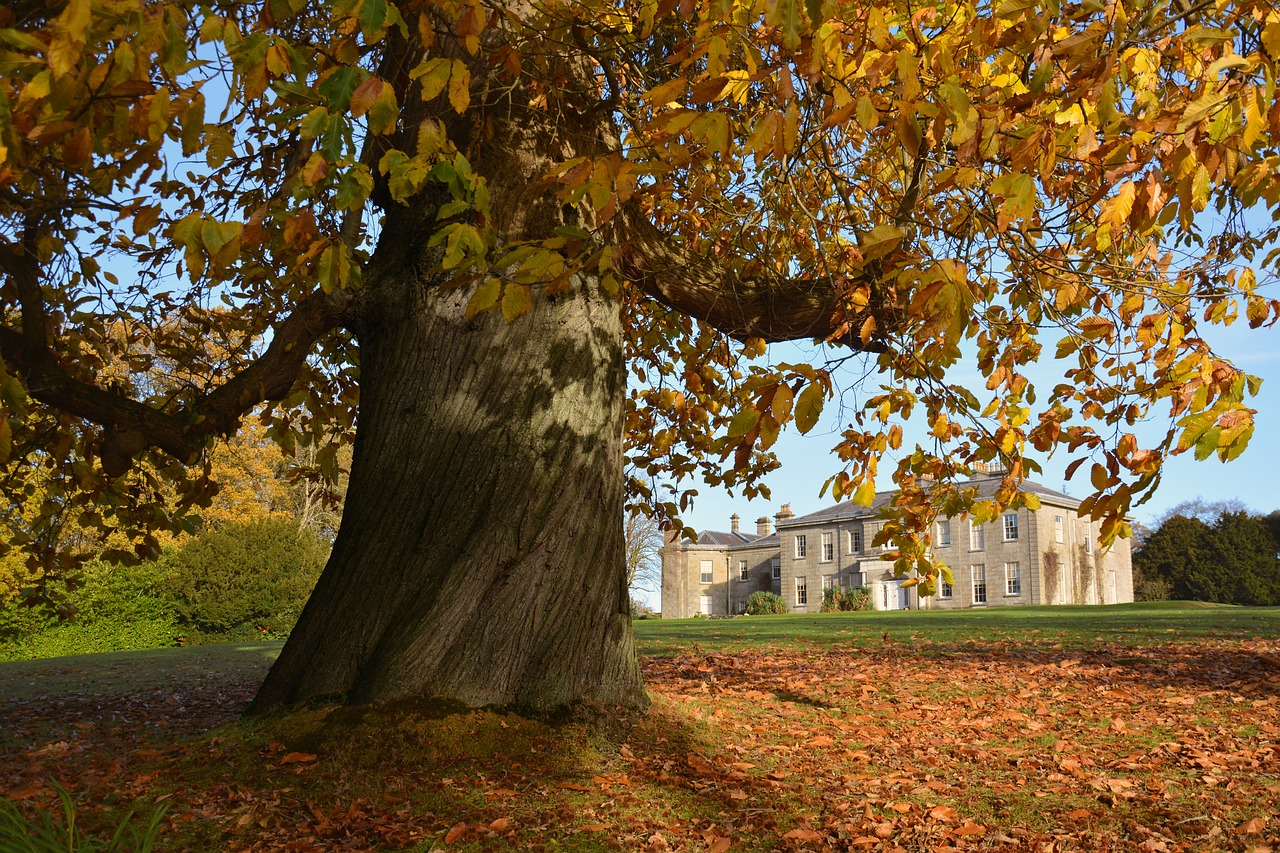 argory-armagh